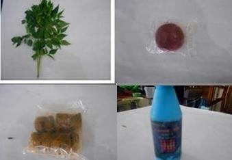 Tips Membuat Pestisida Nabati