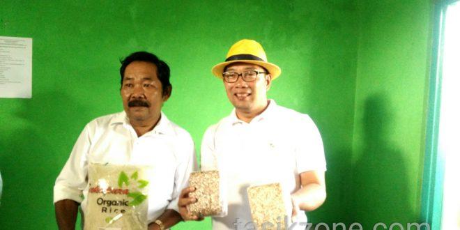 Dengan Contoh Ekspor Gapoktan Simpatik, Kang Emil Petani Bisa Sejahtera