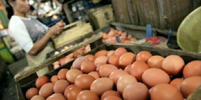 Harga Telur Terus Naik, Pemkot Rencanakan Operasi Pasar