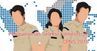 Ada 645 Orang Pelamar CPNS Kota Tasik Yang Tidak Lulus Seleksi Administrasi