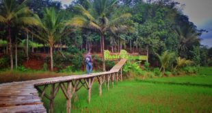 Pasir Pataya Wisata Alam Terbaru Di Kota Tasikmalaya