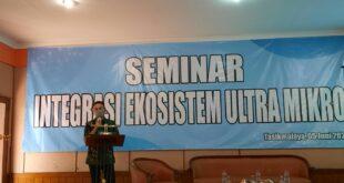 Seminar Integrasi Ekosistem Ultra Mikro, Percepat Proses Inklusi dan Literasi Keuangan